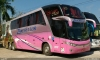 ônibus 2017